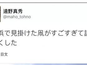 日本网友晒风筝走红