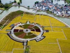 两部门发布强农惠农政策