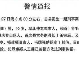 媒体评重庆忠县副县长之死