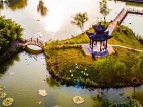 寻找冬日精灵,就来台儿庄双龙湖湿地观鸟园
