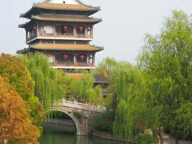"""春天的台儿庄古城私藏了京杭大运河畔的""""最美""""!"""