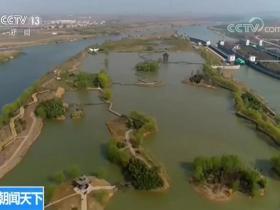 央视新闻频道《朝闻天下》报道台儿庄双龙湖 | 春满大地候鸟归 湿地美景惹人醉