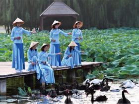 去台儿庄双龙湖湿地寻找夏天,这无处安放的魅力啊!