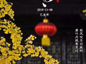 立冬丨台儿庄古城冬天最美的事,你做过几件?
