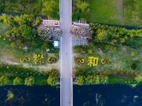 邀请函 | 台儿庄古城祥和庄园即将举行千人花海徒步巡游活动