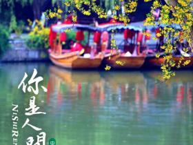 四月你好 | 在台儿庄古城这一幅古典画卷里写诗
