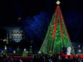白宫圣诞树顶头星星被破坏 因政府关门无法修复