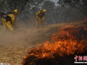 美加州酒乡森林大火42人死亡 无中国公民伤亡