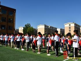 少年强,则国强——台儿庄区实验小学泥沟校区举行入队仪式(图)