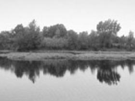 运河访古之台儿庄