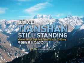 巍巍天山——中国新疆反恐记忆
