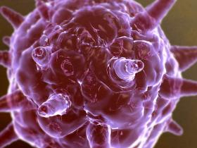 纪录片《人体内旅行》全面展示了人体是如何运行的