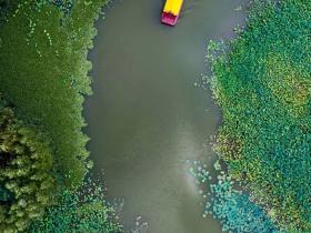 门票免费 | 天然氧吧,美景珍禽,紫色花海,醉美涛沟河湿地,夏日亲水好去处!