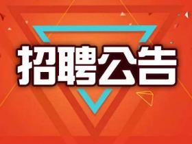 台儿庄区人民法院招聘15人,高中起报!