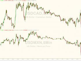 白宫首席贸易顾问纳瓦罗希望美加墨结盟 加元和墨西哥比索直线上涨