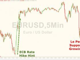 """""""法国特朗普""""首轮支持率上扬 欧元短线下挫"""