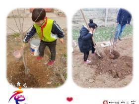 台儿庄区林桥小学开展行为习惯养成系列活动