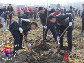 台儿庄区交通运输局积极开展义务植树活动