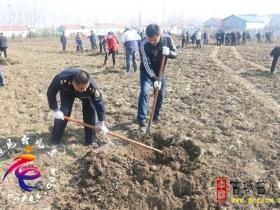 台儿庄区综合行政执法局:积极开展义务植树活动